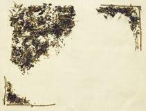 Disposizione di erbe del piano delle erbe differenti su tessuto di tela Immagini Stock