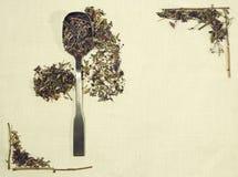 Disposizione di erbe del piano delle erbe differenti su tessuto di tela con un cucchiaio Immagini Stock Libere da Diritti