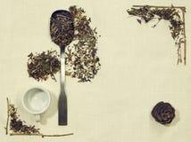 Disposizione di erbe del piano delle erbe differenti su tessuto di tela con un cucchiaio, una tazza e una pigna Immagine Stock