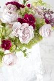 Disposizione di fiore Immagine Stock