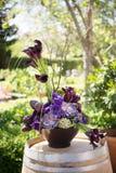 Disposizione di fiore Fotografie Stock Libere da Diritti