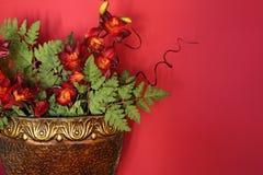 Disposizione di fiore contro una parete rossa Fotografia Stock