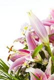 Disposizione di fiore del giglio di tigre Fotografia Stock
