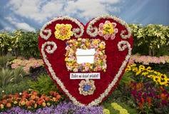 Disposizione di fiore a forma di del cuore Fotografia Stock