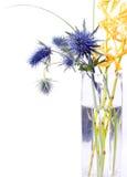 Disposizione di fiore Funky Immagini Stock