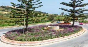 Disposizione di fiori e rotonde a Malta immagine stock libera da diritti