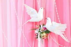 Disposizione di fiori esotica sopra favoloso dentellare e bianco Fotografie Stock Libere da Diritti
