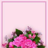 Disposizione di fiori rosa della peonia, del cratego e del lillà Immagini Stock Libere da Diritti