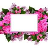 Disposizione di fiori rosa della peonia, del cratego e del lillà con una carta Immagini Stock