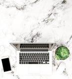 Disposizione di lavoro succulente del piano dello scrittorio del telefono del computer portatile Fotografia Stock