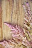 Disposizione floreale delicata su fondo di legno, spazio della copia Fotografia Stock