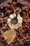 Disposizione floreale di autunno Fotografia Stock Libera da Diritti