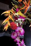 Disposizione floreale esotica variopinta immagine stock