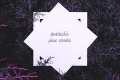 Disposizione piana del fondo rosa magenta blu magico fantastico dei rami di legno di pino di colore con la struttura bianca sulla fotografie stock libere da diritti