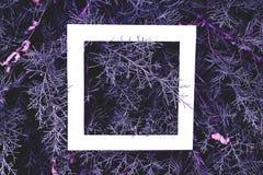 Disposizione piana del fondo rosa magenta blu magico fantastico dei rami di legno di pino di colore con la struttura bianca sulla fotografia stock libera da diritti