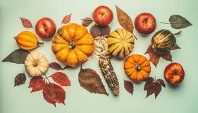 Disposizione piana della composizione di autunno con la vari zucca, foglie di caduta, mele e cereale, vista superiore Fotografia Stock