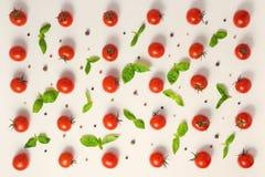 Disposizione piana di bello pomodoro ciliegia senza cuciture d'avanguardia del modello, asciutta Fotografie Stock Libere da Diritti