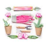 Disposizione piana di giardinaggio con i fiori, i vasi e gli strumenti di giardinaggio rosa su fondo bianco Fotografie Stock Libere da Diritti
