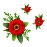 Disposizioni con i nastri di seta rossi del fiore di zinnia e Fotografie Stock