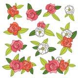 Disposizioni dei fiori delle rose Fotografia Stock Libera da Diritti