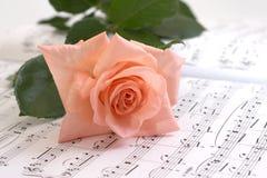 Disposizioni della Rosa su un documento musicale fotografia stock libera da diritti