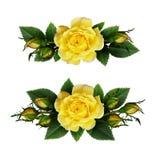 Disposizioni di fiori della rosa di giallo Immagini Stock Libere da Diritti