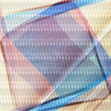 Dispute of squares Stock Image