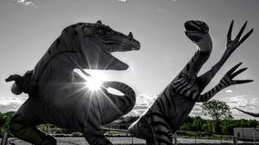 Dispute between two dinosaurs. Statue of dinosaurs photo taken against a day black and white green color of trees royalty free stock photography