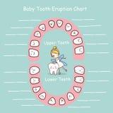 Disque d'éruption de diagramme de dent de lait illustration de vecteur