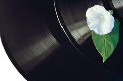 Disque de musique de vinyle de fleur photos stock