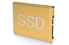 Disque transistorisé à semi-conducteur d'or de lecteur illustration de vecteur