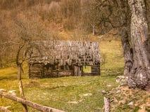 Disrepair drewniany dom zdjęcie stock
