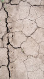 Disruption. Season drought parched earth, the dead land Royalty Free Stock Photo