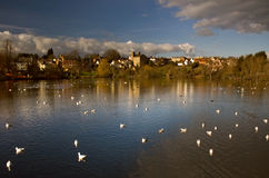 The Diss Mere Stock Photo