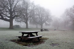 Diss Norfolk Mere Park in Winter. A very cold, frosty and foggy morning in the Park of Diss Norfolk East Anglia England United Kingdom. The trees, grass fields Stock Image