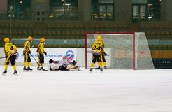 Dissapointed goaltender Royalty Free Stock Images