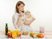 Dissatisfied cat sniffs offered her a spoonful of vegetable salad Stock Photos