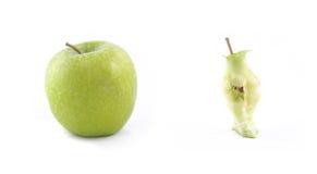 Disseção de uma maçã fotos de stock