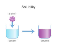 Dissolving Solids. Solubility Chemistry. Vector illustration design Royalty Free Stock Image