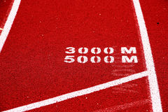 Distance race start line. The start line for the 3000 and 5000 meter track and field race Stock Photo