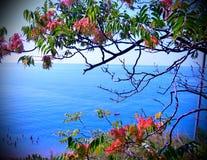 Distancia del mar Fotografía de archivo libre de regalías