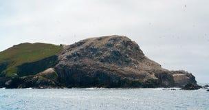 Distant bird sanctuary at Seven Islands Stock Image