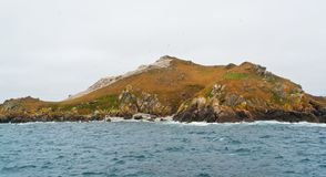 A distant bird sanctuary at Seven Islands Stock Photography