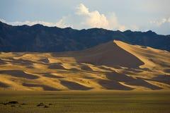 Khongor Els Sand Dune Gobi Desert Camels Mongolia Stock Images