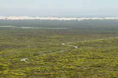 Distant desert dunes in De hoop nature reserve Stock Image