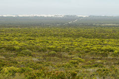 Distant desert dunes in De hoop nature reserve Stock Photos