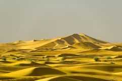 Distant dunes. Desert dunes in the distance stock photography