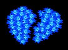 Distant en forme de coeur de belles fleurs bleues Photos stock