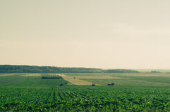 Distant fields with tractors in retro film camera filter. Royalty Free Stock Images