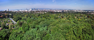 Distant Frankfurt Panorama with City Forest Royalty Free Stock Image